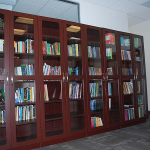 Trophy-Case-or-Book-Storage