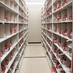 Athletic Equipment Storage Solutions