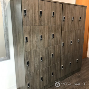 Day Use Lockers - Event Lockers - Employee Lockers - Secure Lockers