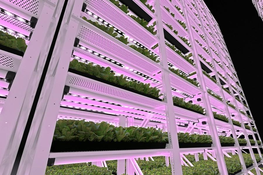 Vertical Grow Rack Sys