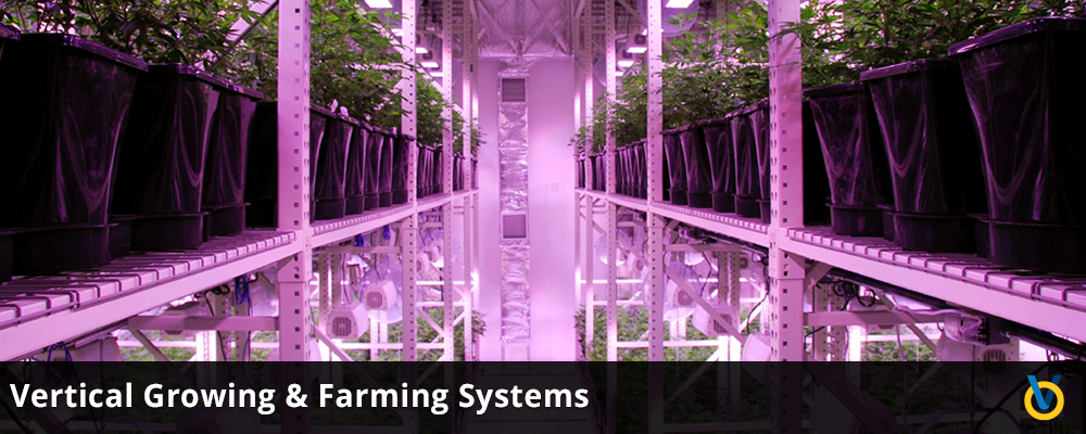 Indoor Farming & Grow Facility