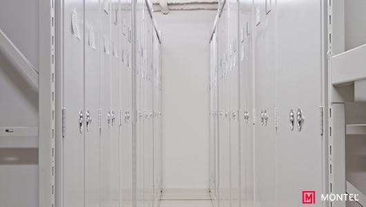 Museum Cabinet Storage - Art Storage