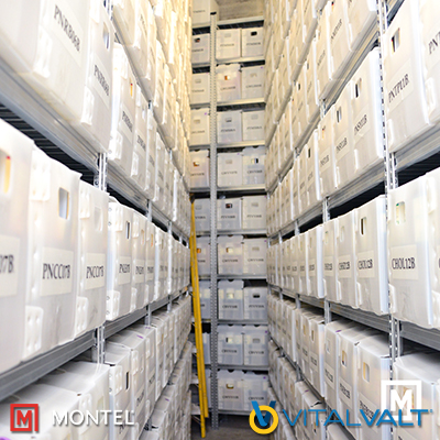 Box Shelving - Archival Storage Systems