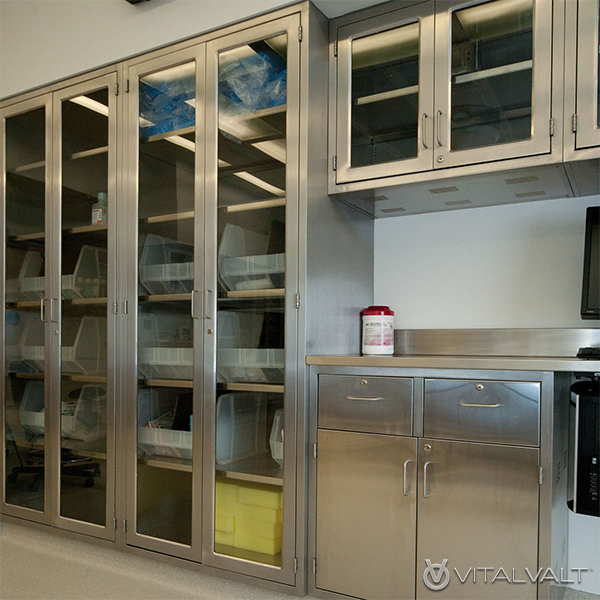 Cleanroom Storage Cabinets - Laboratory Storage Cabinets