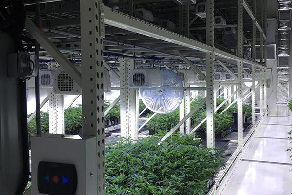 Vertical Cultivation System - Mobilized