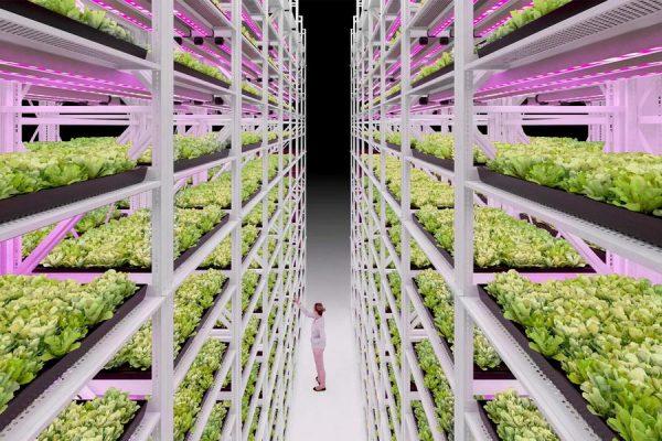 Grow Racking System