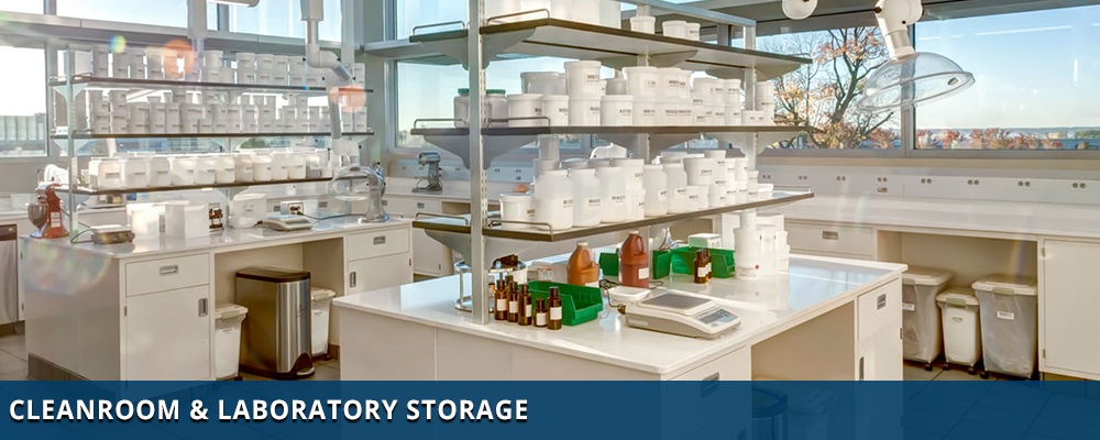 Stainless Steel Storage Cabinets for Cleanrooms & Labs